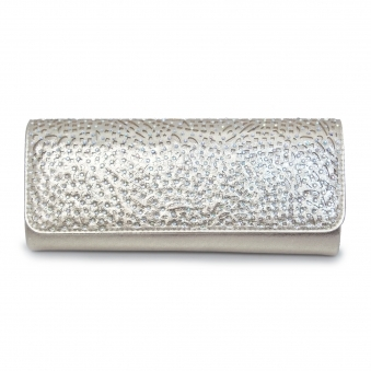 ZLC122 Fay Clutch Bag