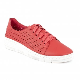 JLY181 Clifton Stylish Trainer